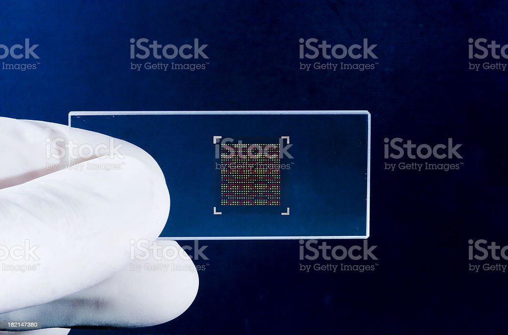 DNA chip stock photo