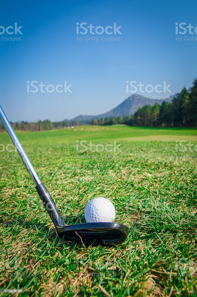 Chipping a golf ball onto the green with driver golf stock photo