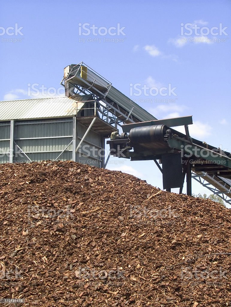 chipping: woodchip industry stock photo