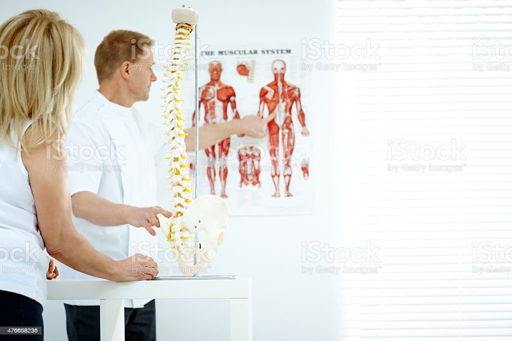 Chiropractor explains patient using chart and model stock photo