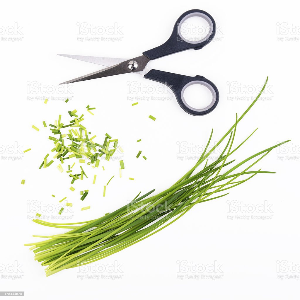 Chive and scissors stock photo