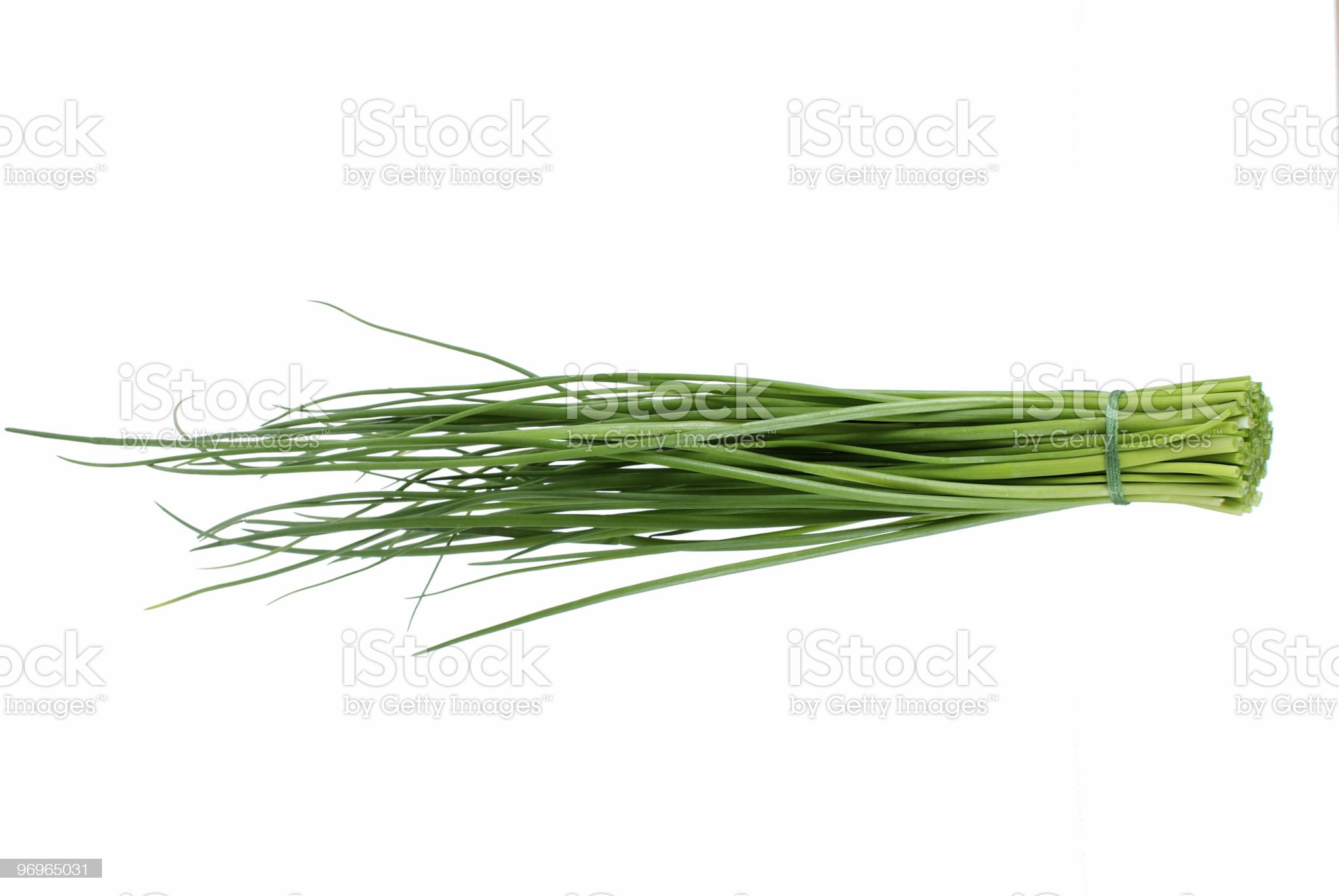 Chive royalty-free stock photo