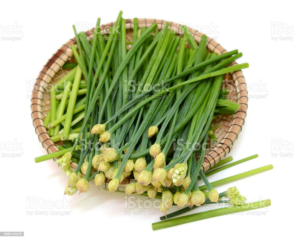 Chives flower stock photo