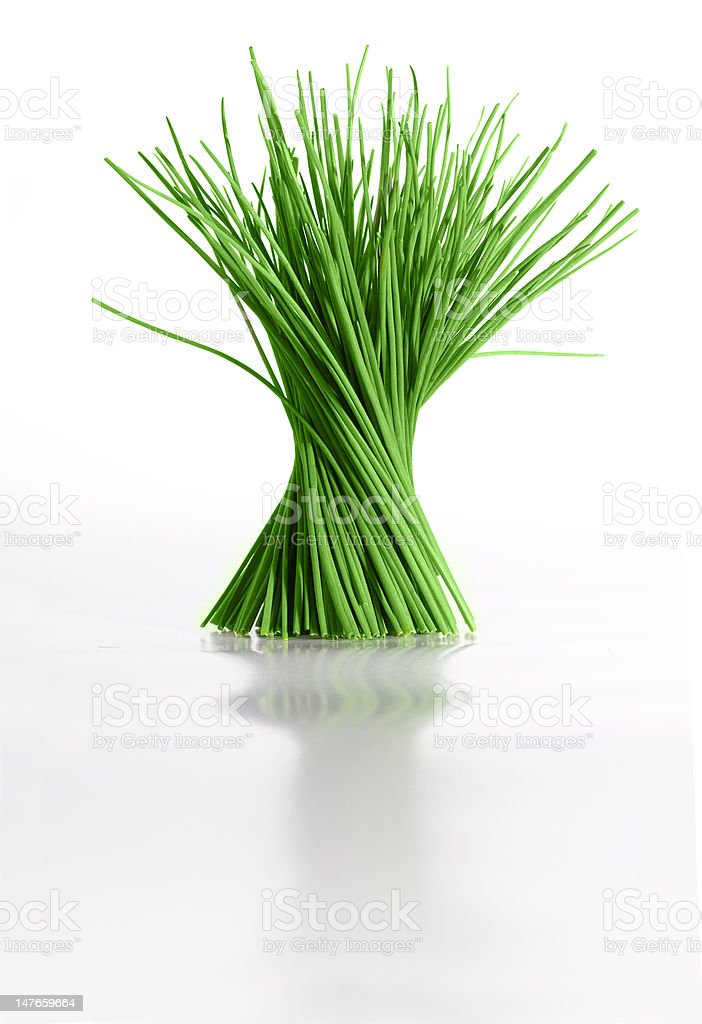Chives royalty-free stock photo