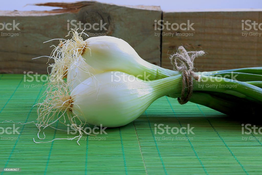 Chive-vegetable stock photo
