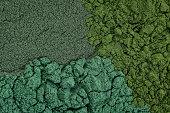 chlorella, spirulina and blue-green