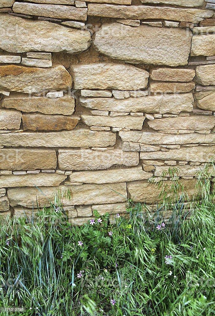 Choacoan wall Chimney Rock National Monument Colorado stock photo