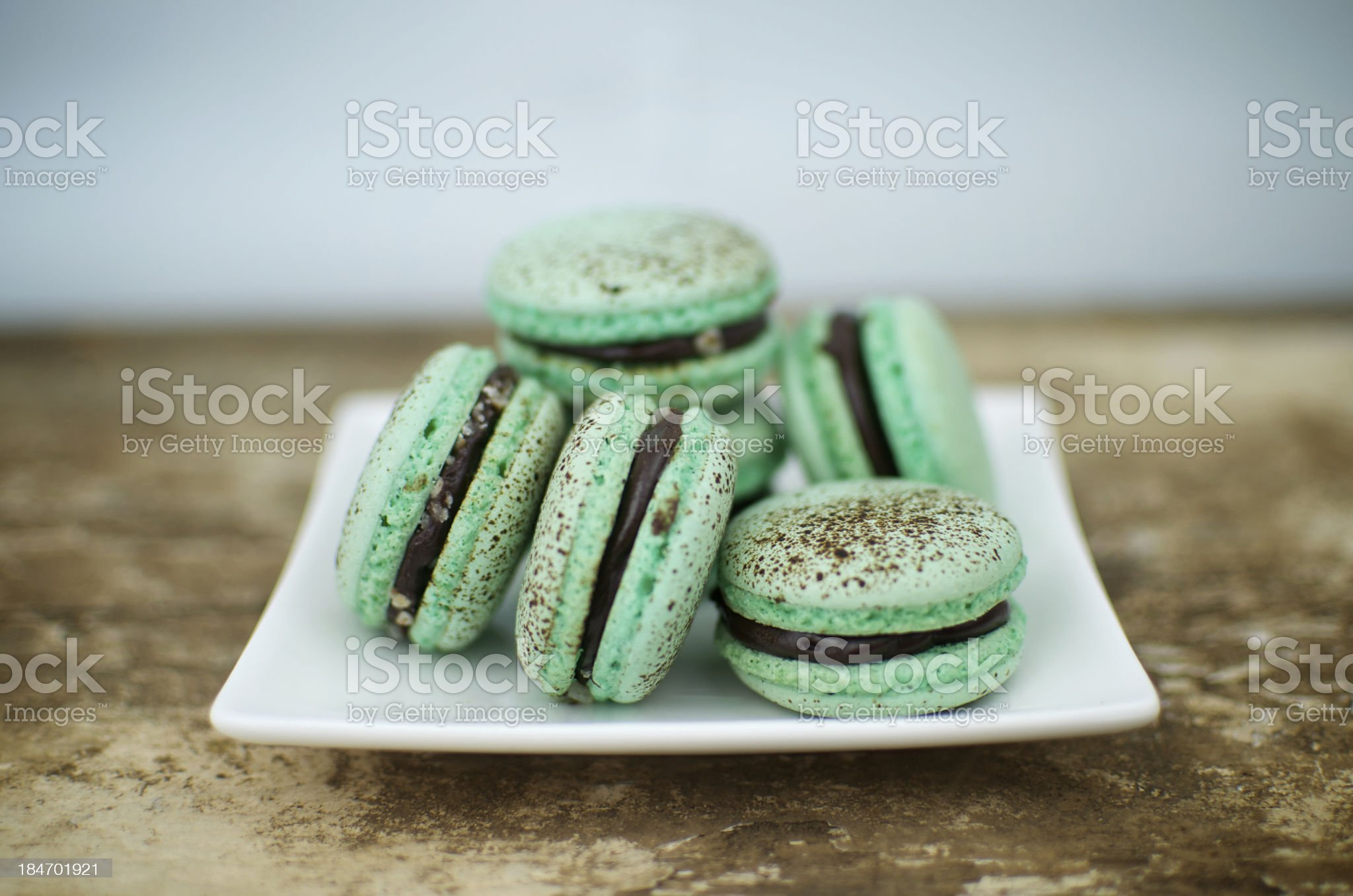 Choc mint macarons on a square plate royalty-free stock photo