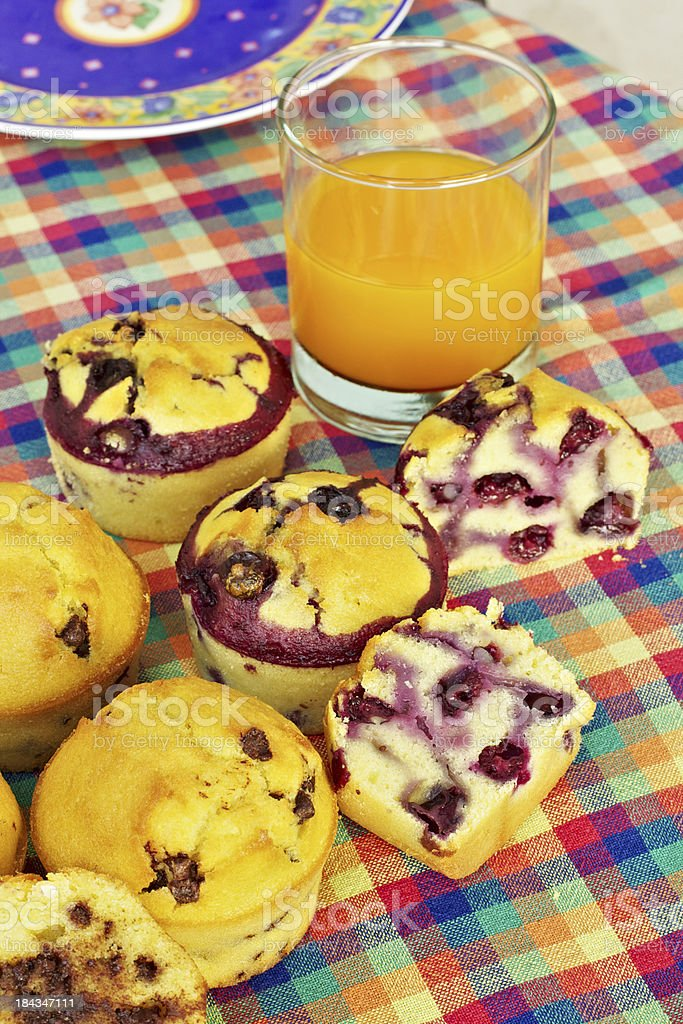 Chocolate and blueberry Muffins royalty-free stock photo