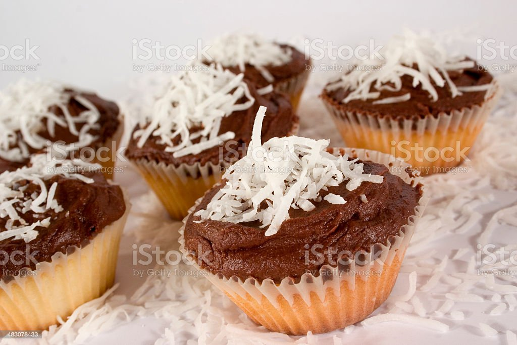 Chocolate And Coconut Cupcakes royalty-free stock photo