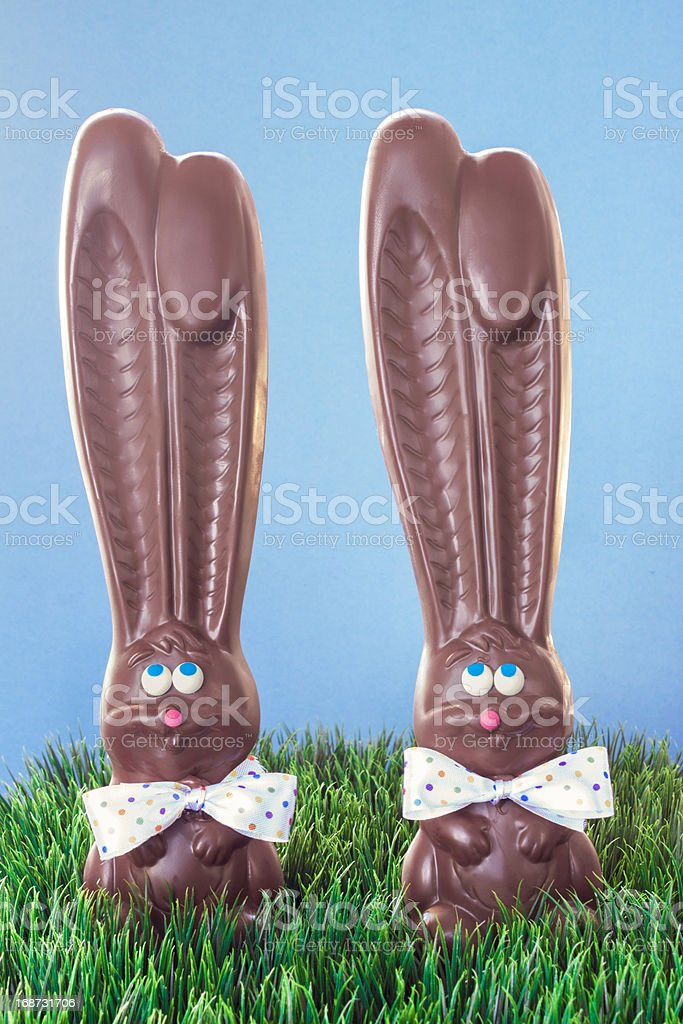 Chocolate Bunnies In Grass royalty-free stock photo