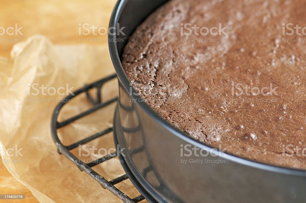Chocolate Cake in a Springform Pan on Cooling Rack stock photo