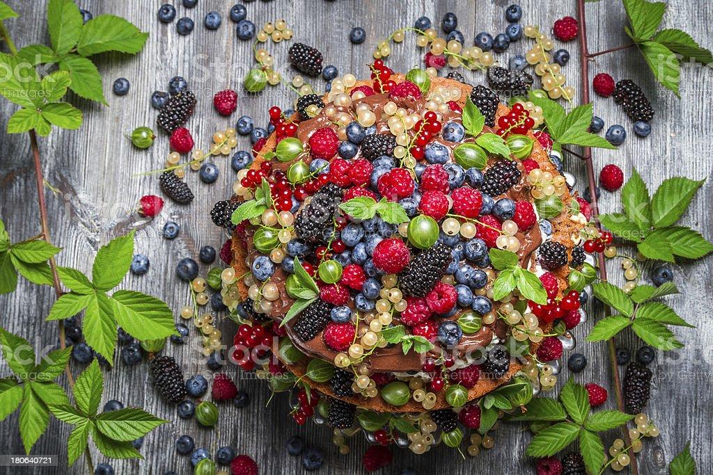 Chocolate cake made of mix wild berries royalty-free stock photo