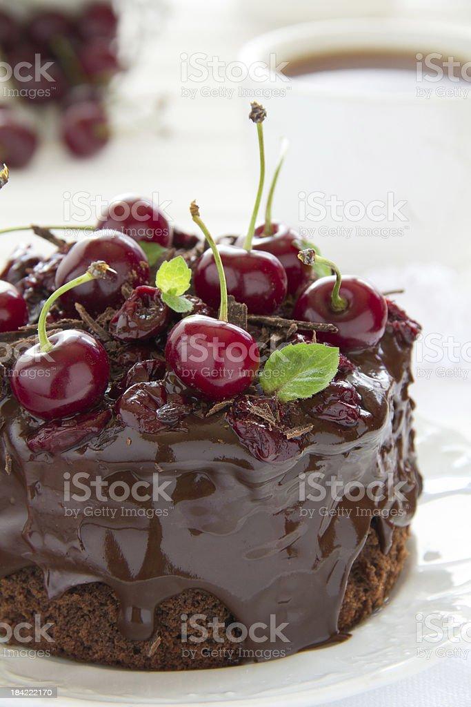 Chocolate cake . royalty-free stock photo