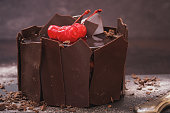 Chocolate cake surrounded by pieces of chocolate