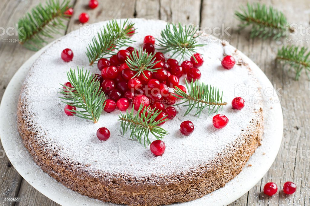 Chocolate cake with cranberries royalty-free stock photo