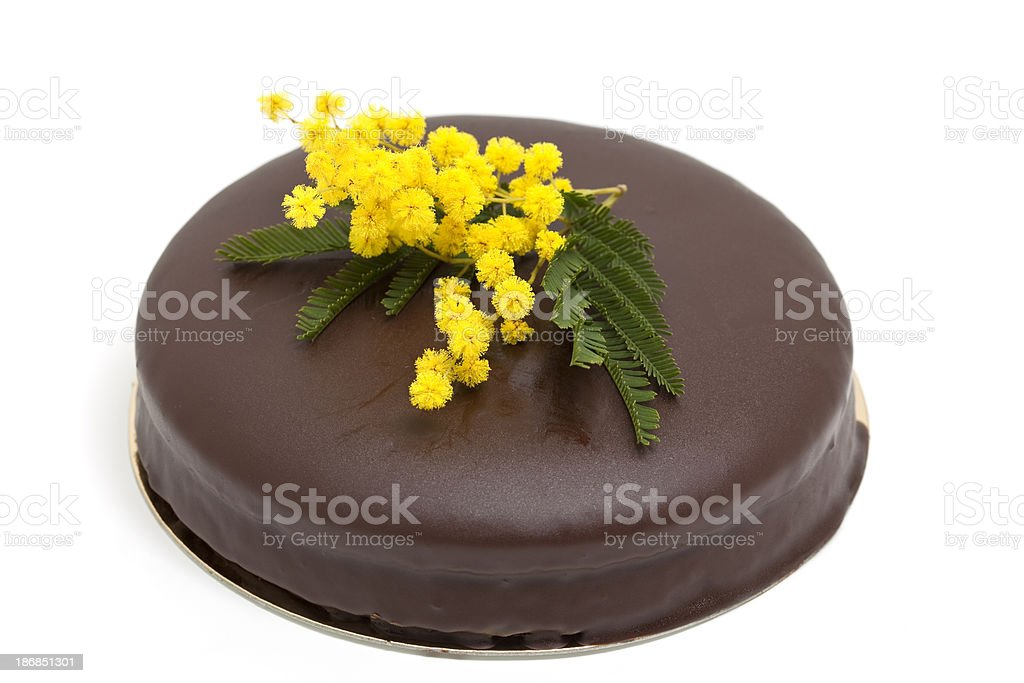 chocolate cake with mimosa flower royalty-free stock photo