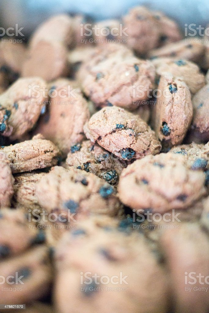 Chocolate Chip Cookies in Blue Tray stock photo