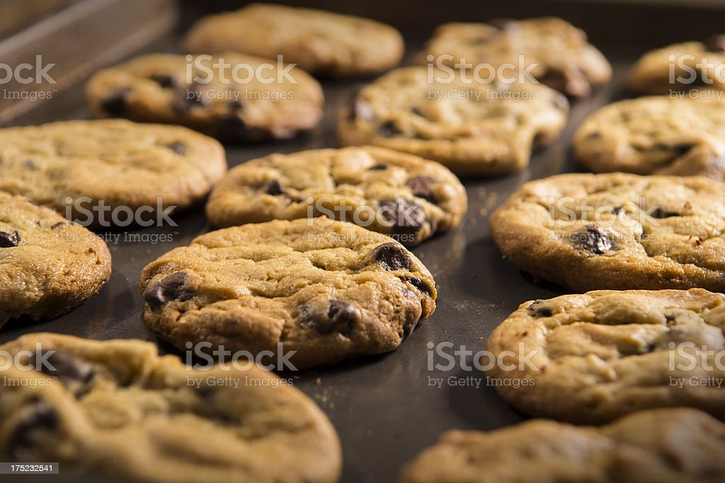 Chocolate Chip Cookies on pan royalty-free stock photo