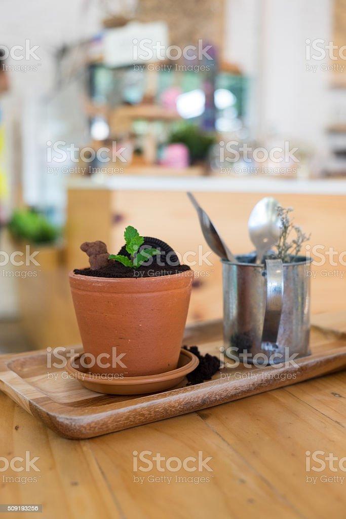 Chocolate chip crush in flower plot stock photo