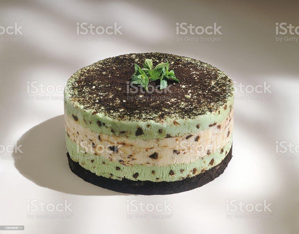 Chocolate Chip Mint Cake stock photo