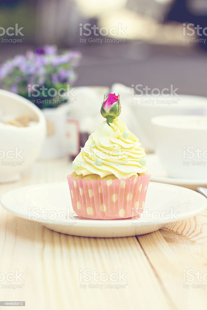 Chocolate Cupcake with chocolate frosting on the table stock photo