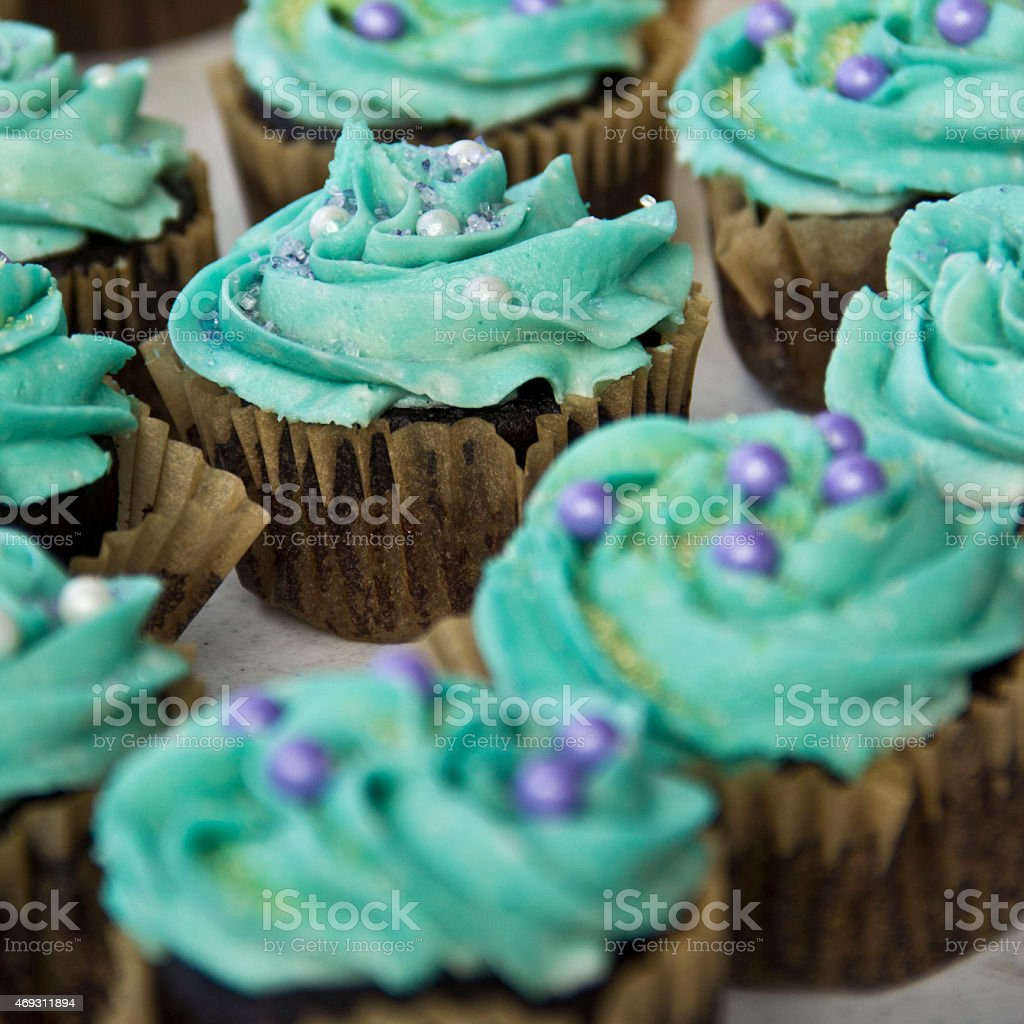 Chocolate Cupcakes with Blue Frosting stock photo