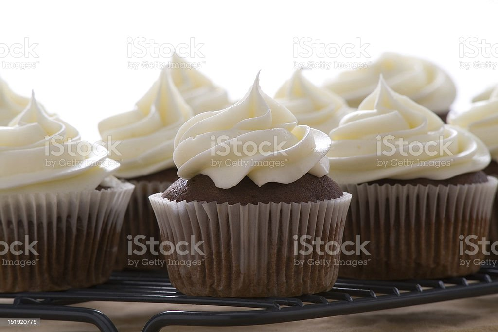 Chocolate cupcakes with vanilla frosting royalty-free stock photo