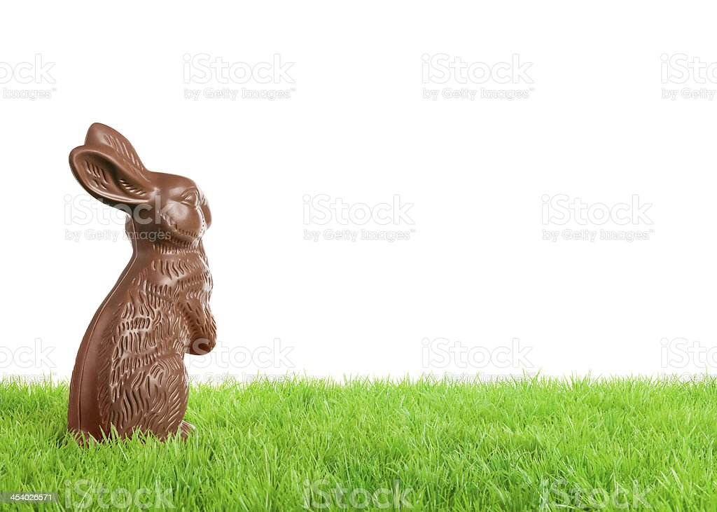 Chocolate Easter bunny in grass stock photo