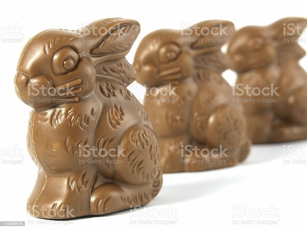 Chocolate Easter Bunny royalty-free stock photo