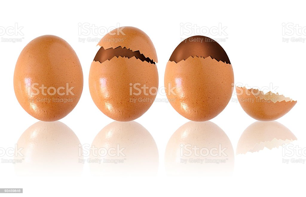 Chocolate Eggs royalty-free stock photo
