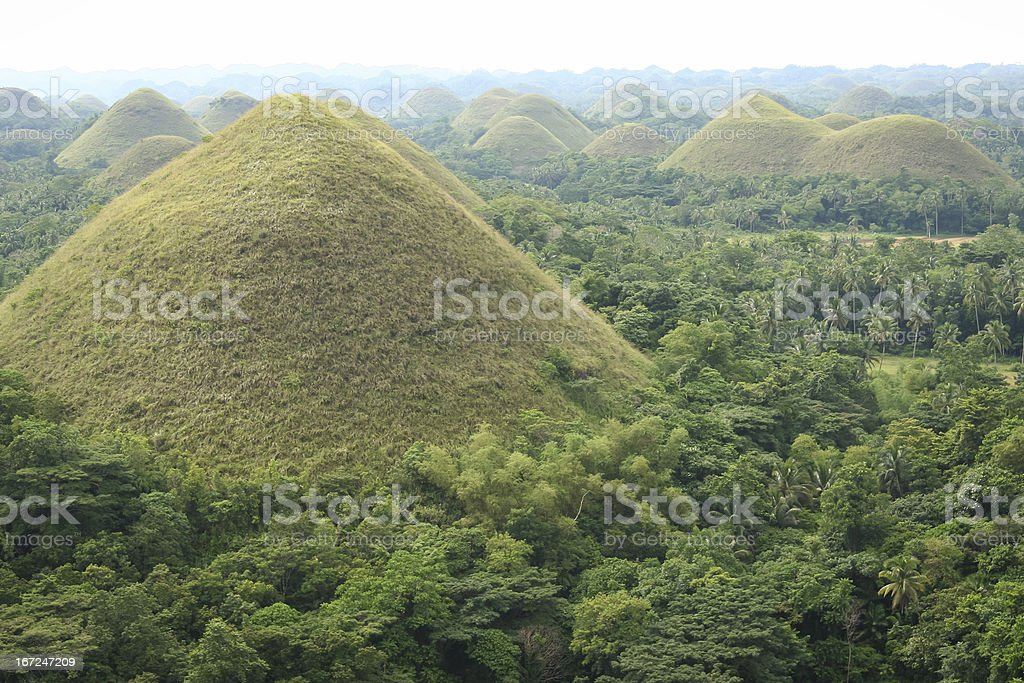 chocolate hills bohol island philippines royalty-free stock photo