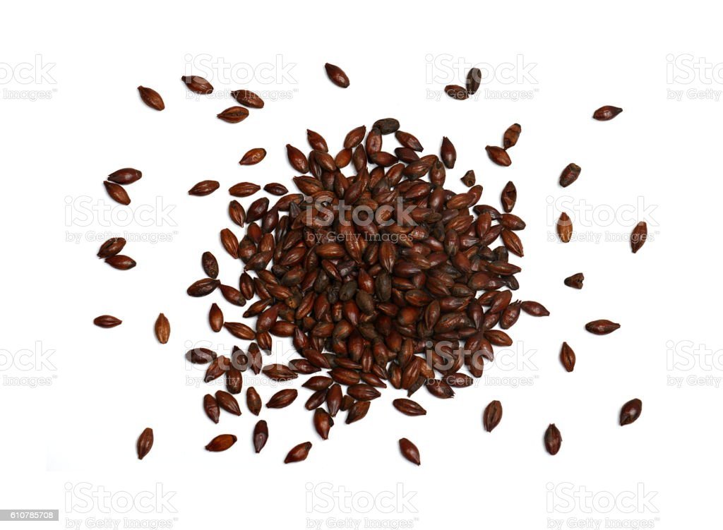 Chocolate Malted Barley on White Background stock photo