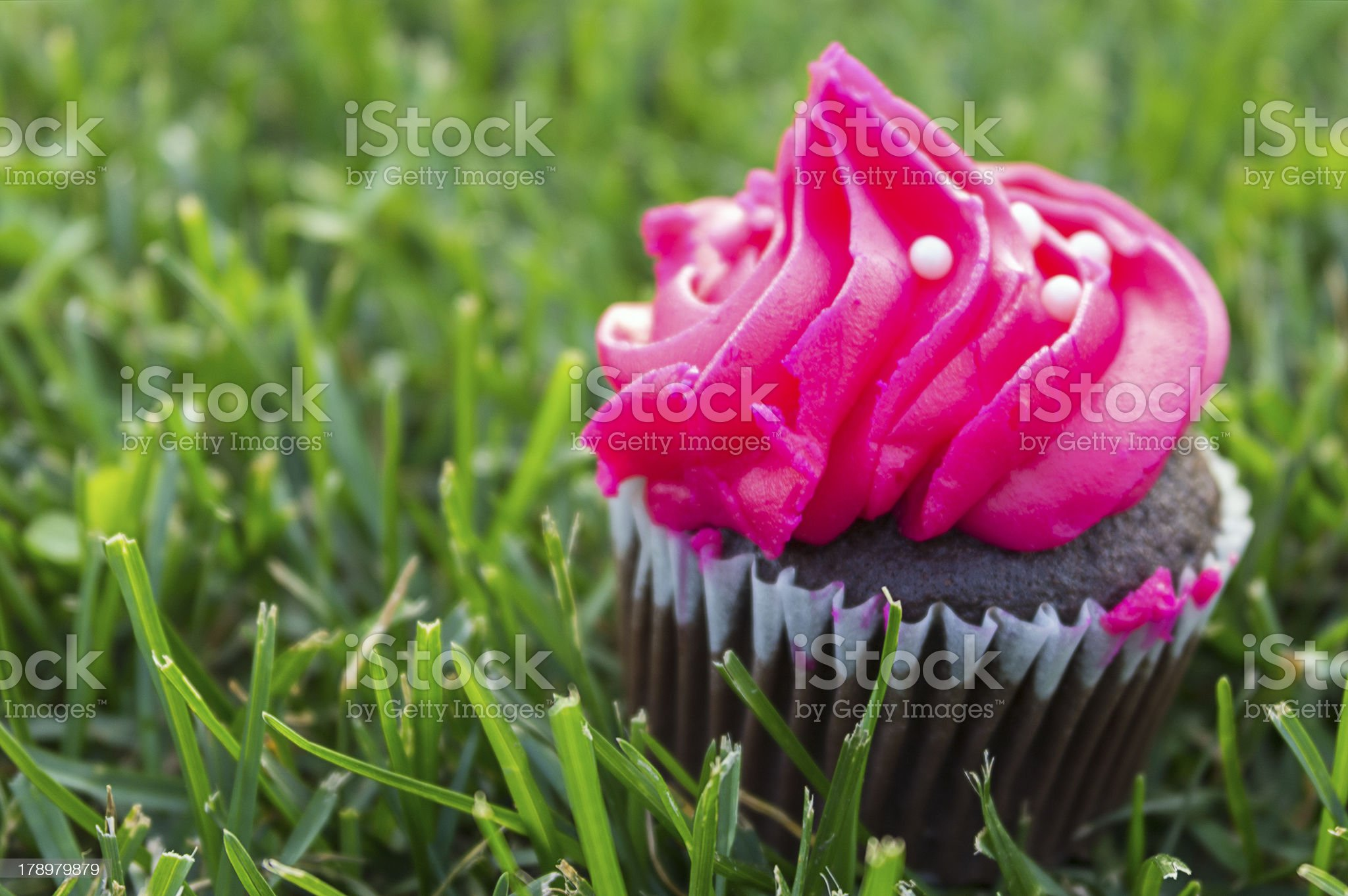 Chocolate muffin with Pink Cream royalty-free stock photo