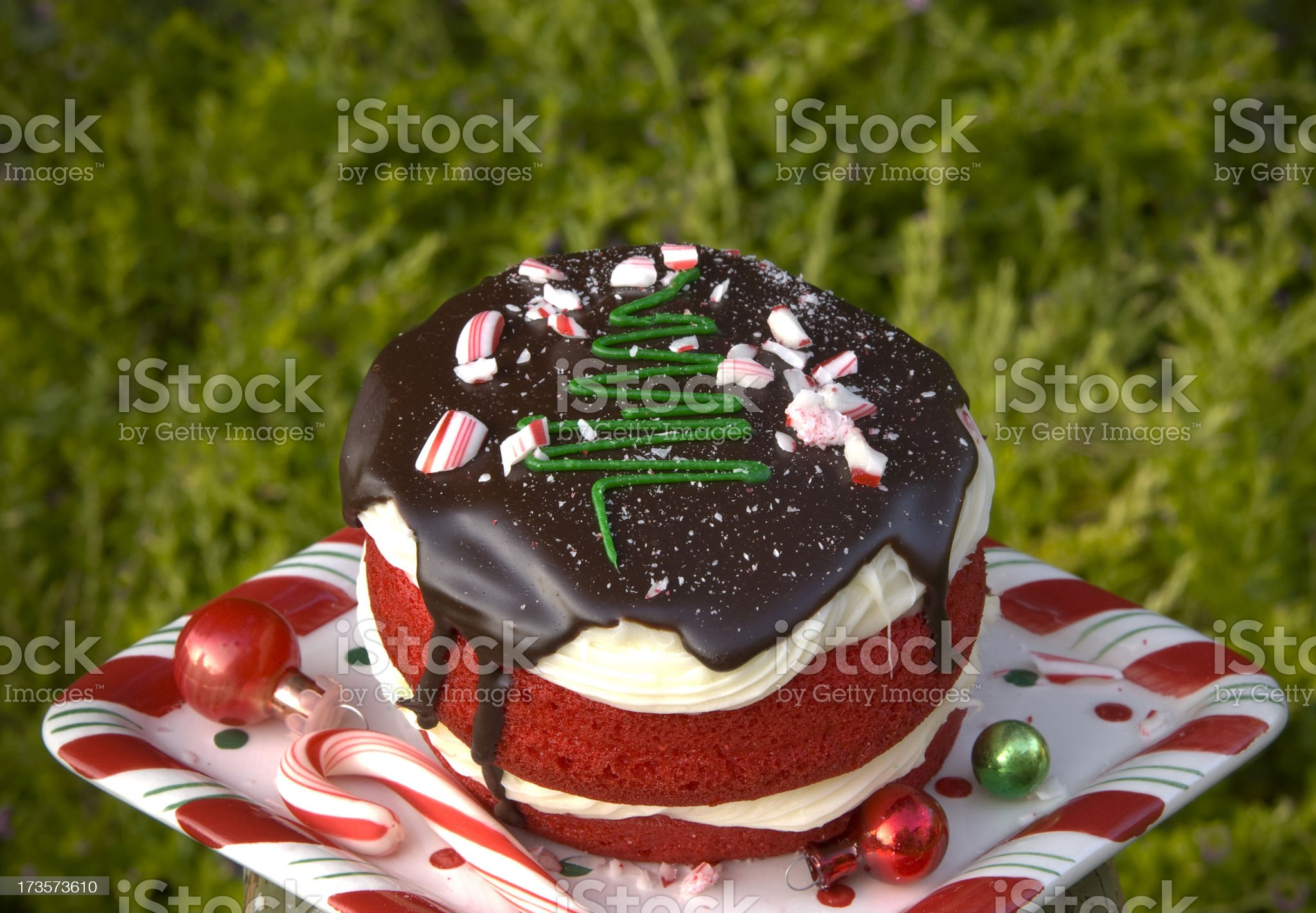 Chocolate Red Velvet Christmas Cake & Peppermint Candy Cane Cupcake Dessert royalty-free stock photo