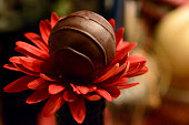 Chocolates and Flowers Truffle