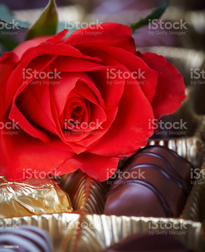 Chocolates and Red Rose royalty-free stock photo