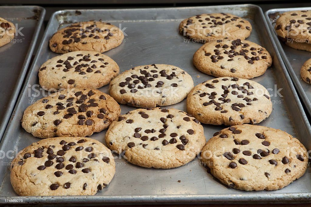 Chocoloate Chip Cookies royalty-free stock photo
