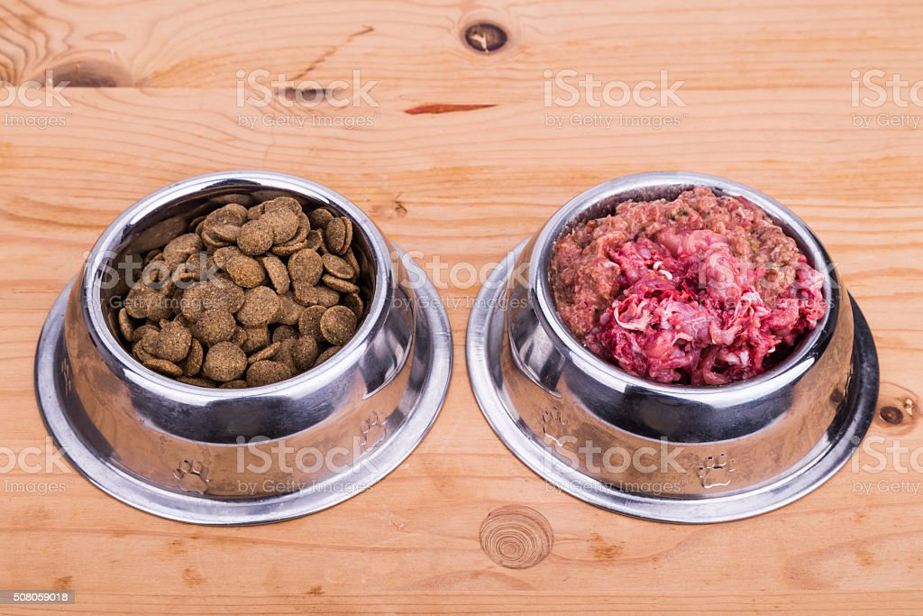 Choice of raw meat or kibbles dog food in bowl stock photo