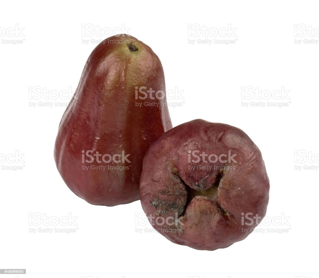 Chomphu or Red Apple stock photo