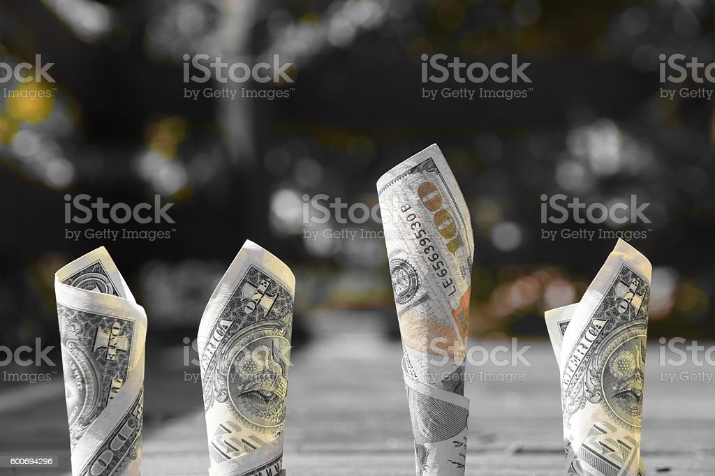 Choose the right economic choice Concept stock photo