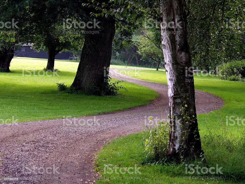 Choose your path. royalty-free stock photo