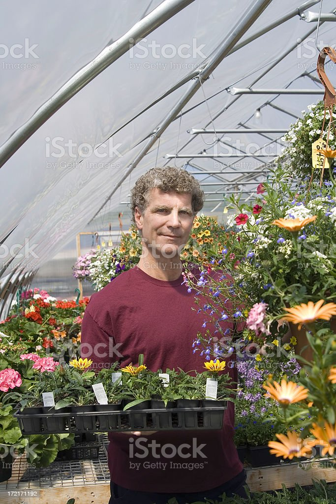 Choosing Flowers at the Garden Center royalty-free stock photo
