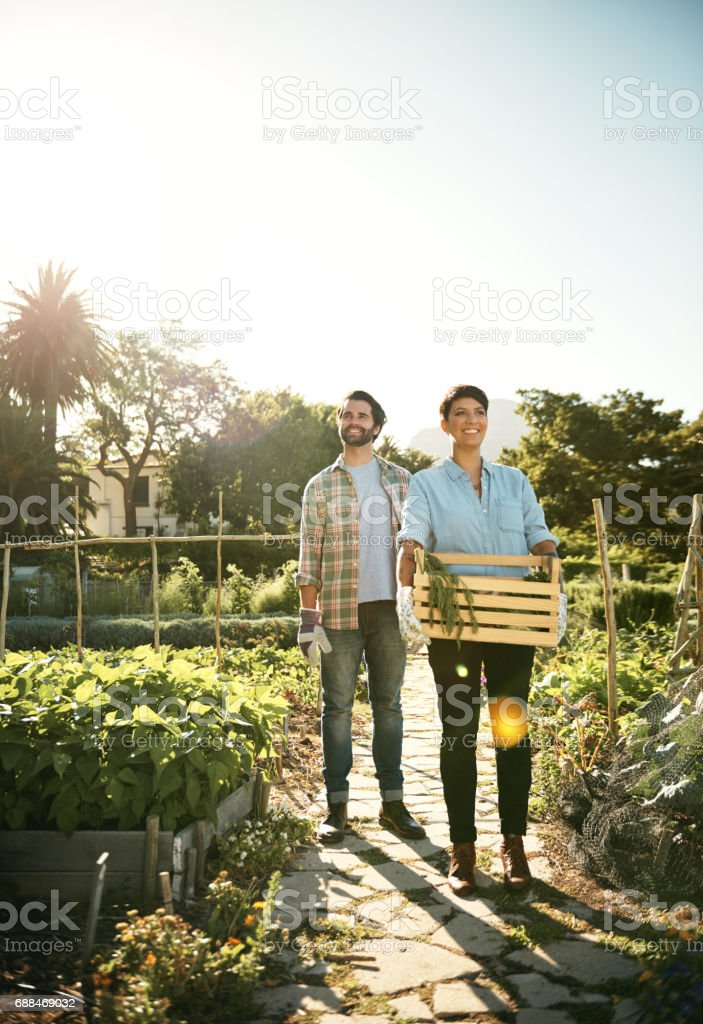 Choosing organic means showing kindness to the earth stock photo