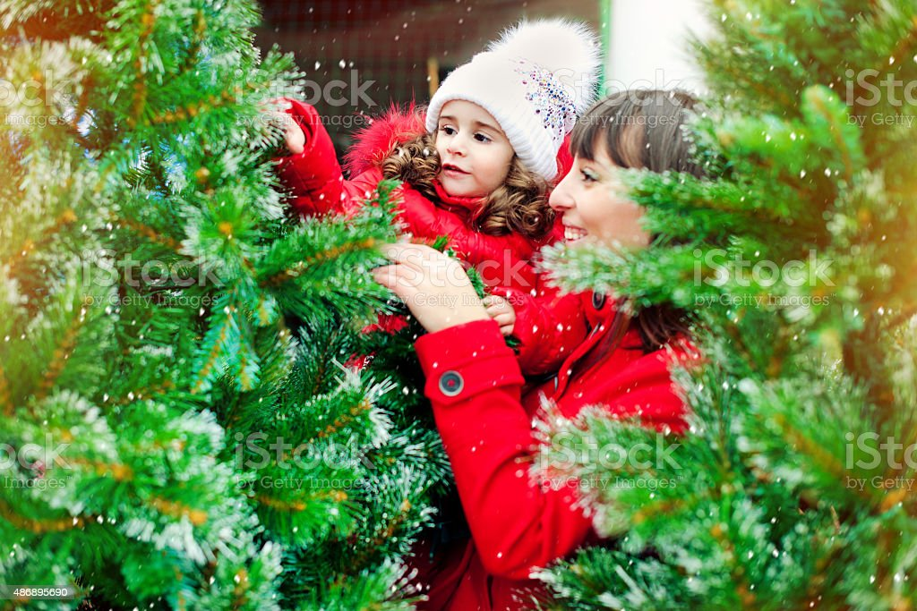 Choosing xmas tree stock photo