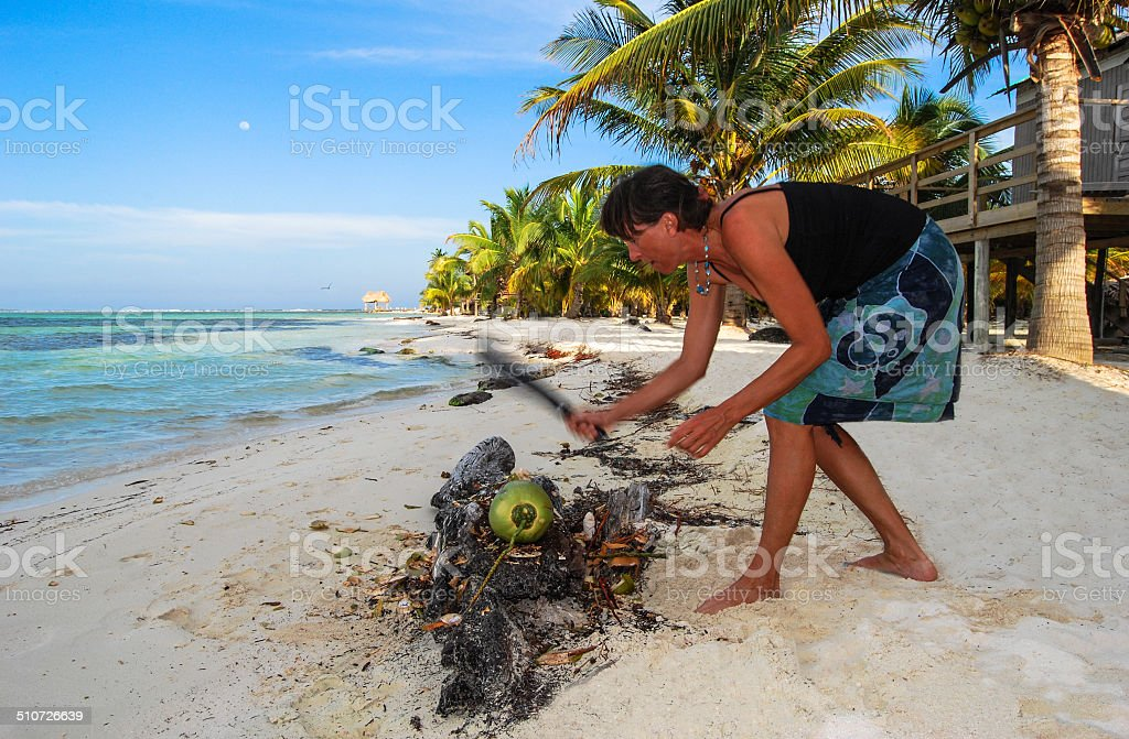 Chop the Coconut stock photo