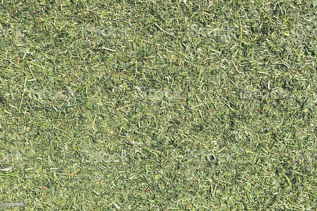Chopped Alfalfa for Silage Background stock photo