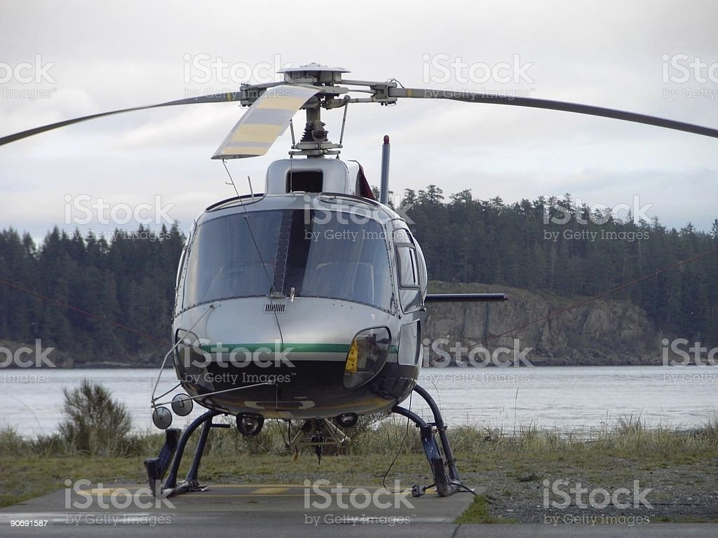 Chopper Nose royalty-free stock photo