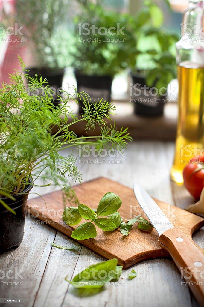 Chopping a basil stock photo
