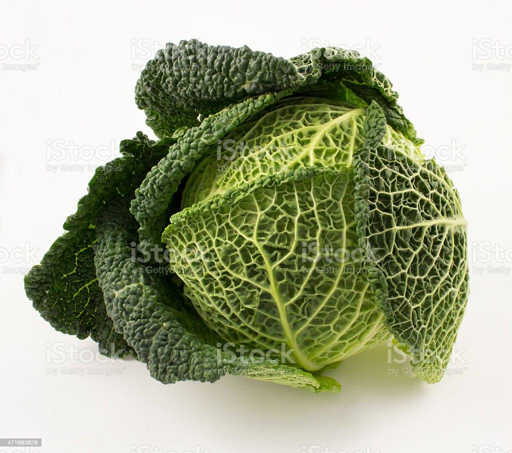 Chou vert stock photo